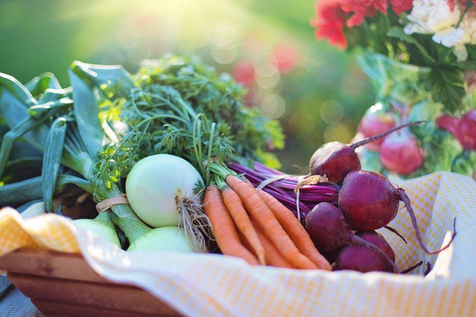 nieobrane warzywa przyniesione z ogrodu